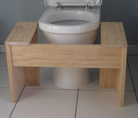 D I Y Plans Lillipad Squatting Toilet Platform