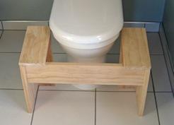 D I Y Plans Lillipad Squatting Toilet Platform