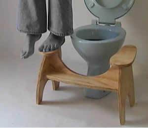 About The Lillipad Lillipad Squatting Toilet Platform